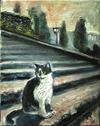ミケランジェロ広場の猫